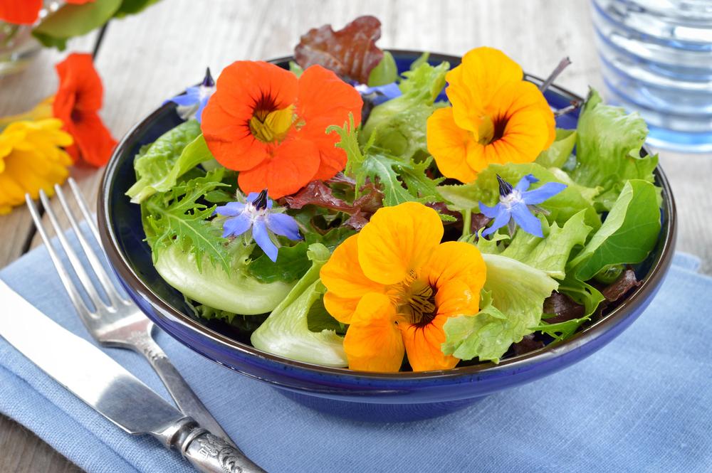 flores-comestiveis